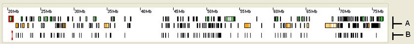 AgileFileViewer Screenshot 3